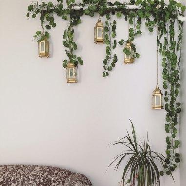 hanging ivy.jpg